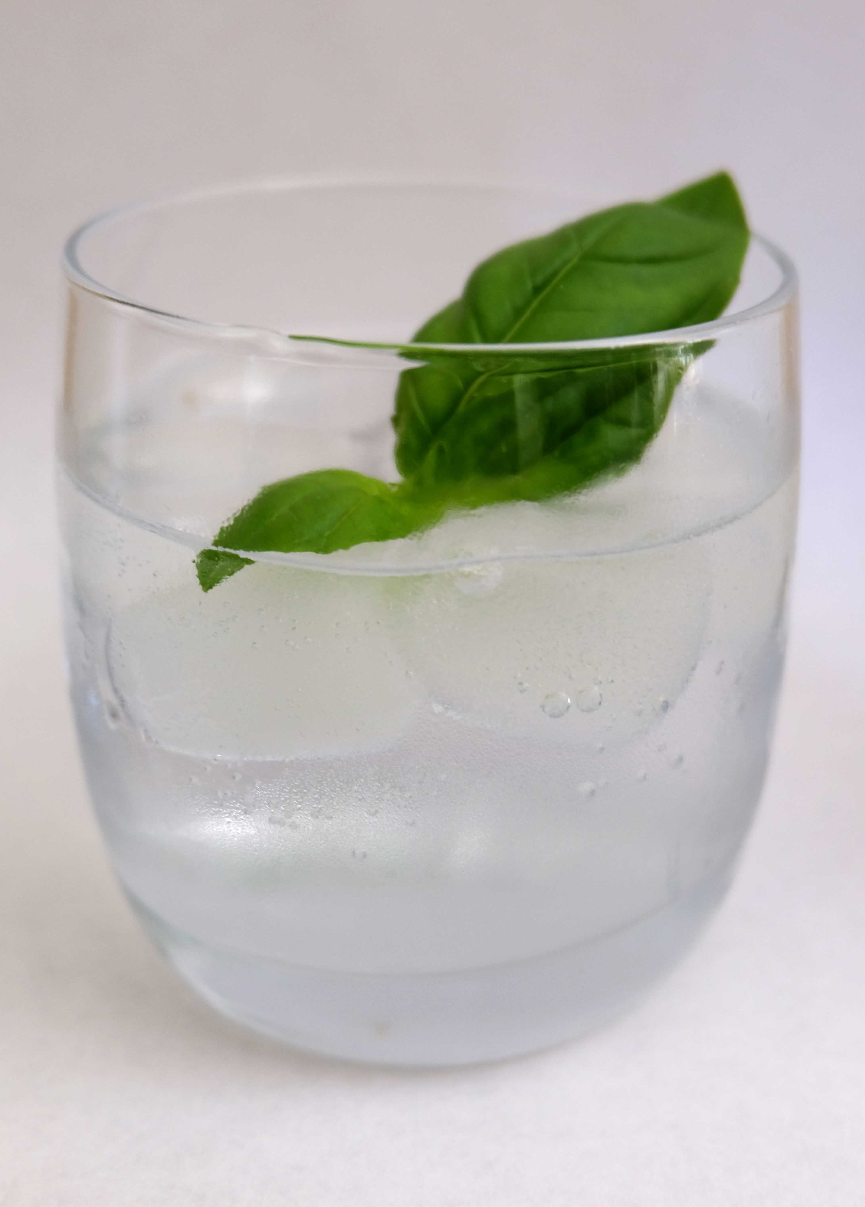 Kintyre Gin for Dummies : A G&T How-to